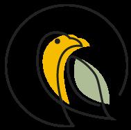 Birdhouse Yoga